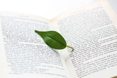 東大英語対策法とおすすめ参考書・問題集を上位合格者が解説