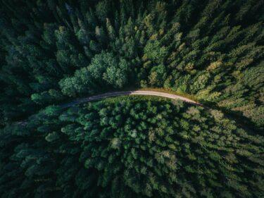 【2021年版】『名問の森』物理のレベルと効果的な使い方を東大生が解説